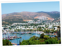 Meet the furniture supplier - bodrum