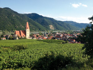 wachau wine valley, austria
