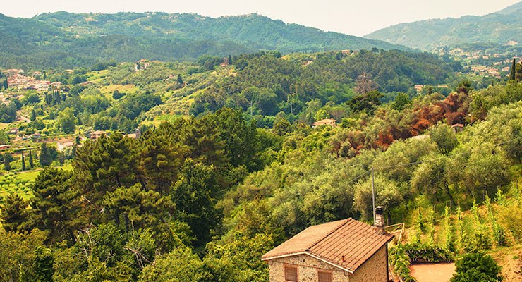 The Timeless Appeal of Tuscany