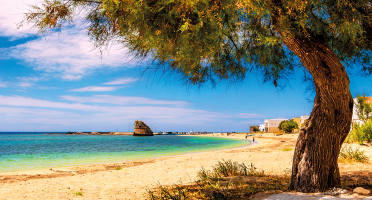 All You Need to Know About Sardinia