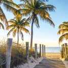 Get our Free Guide to Property in Florida