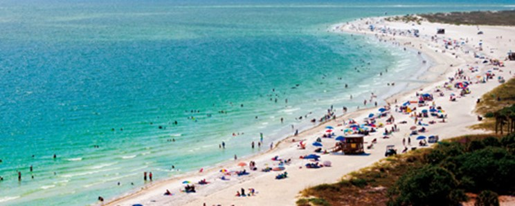 Where To Buy In Florida
