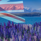 How to Emigrate to New Zealand