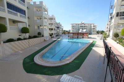 pool-and-bar