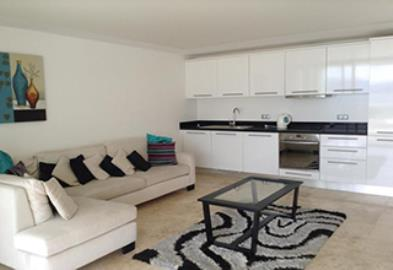 furnished-lounge-and-kitchen
