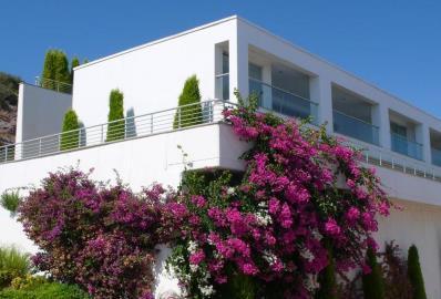 lovely-penthouse