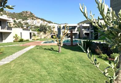 garden-areas-and-walkways