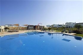 Image No.7-Villa de 3 chambres à vendre à Vila do Bispo