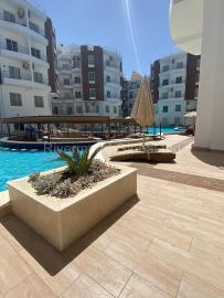 Aqua-Palms-Resort--9-