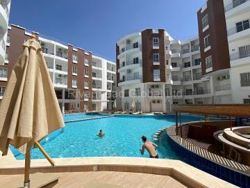 Aqua-Palms-Resort--11-