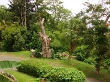 Image No.7-Maison de 4 chambres à vendre à Sainte Lucie