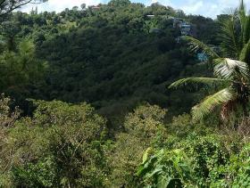 Image No.8-Terre à vendre à Castries