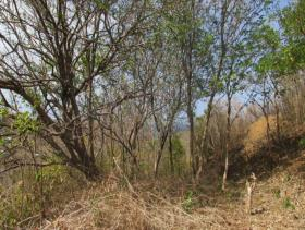 Image No.8-Land for sale