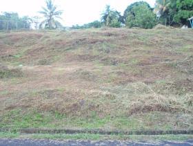 Image No.3-Terre à vendre à Castries