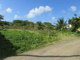 Image No.0-Land for sale