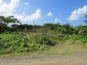 Image No.2-Terre à vendre à Bonne Terre