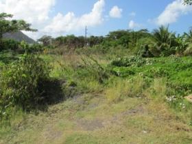 Image No.3-Terre à vendre à Bonne Terre