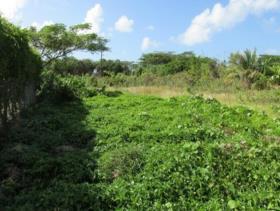 Image No.1-Terre à vendre à Bonne Terre