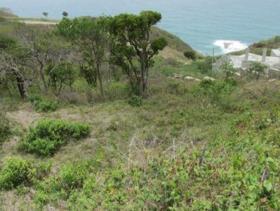 Image No.2-Terre à vendre à Cap Estate