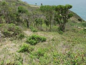 Image No.8-Terre à vendre à Cap Estate