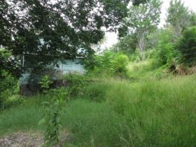 Image No.1-Terre à vendre à Anse-la-Raye