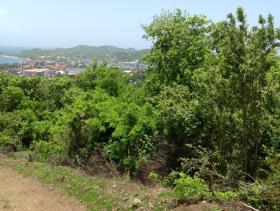 Image No.9-Terre à vendre à Gros Islet