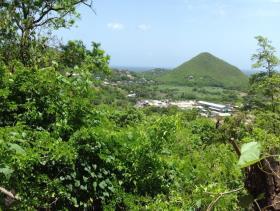 Image No.11-Terre à vendre à Gros Islet