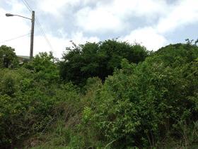 Image No.1-Terre à vendre à Beausejour