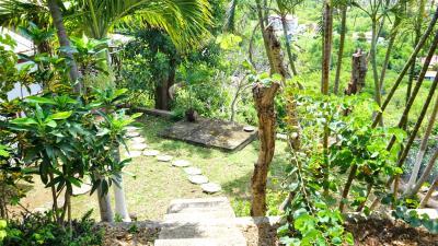 St-Lucia-Homes---Villa-Cadasse---garden