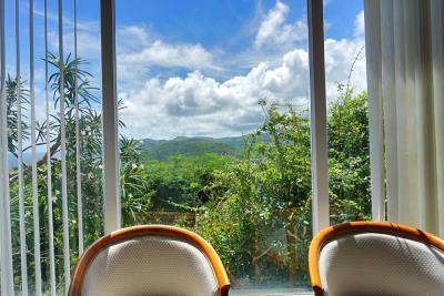 St-Lucia-Homes---Villa-Cadasse---view2