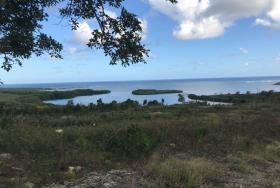 Image No.2-Terre à vendre à Vieux Fort
