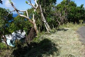 Image No.7-Terre à vendre à Cap Estate