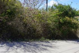 Image No.4-Land for sale