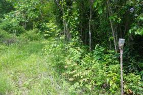 Image No.1-Terre à vendre à Monchy