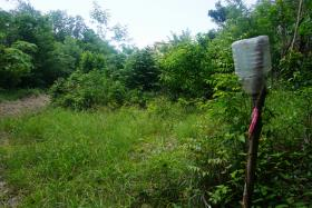 Image No.3-Terre à vendre à Monchy