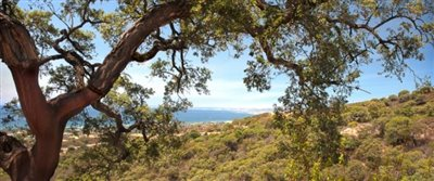 C2_Elviria_Views_Marbella