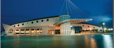 palacio de deportes torrevieja