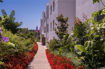 A7-Botanic-garden-July2019