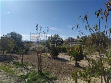 cla7328-resale-villa-for-sale-in-partaloa-352