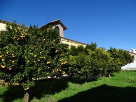 Image No.1-Villa de 7 chambres à vendre à Cernache do Bonjardim