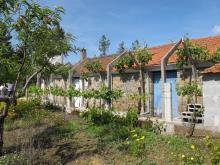 Sertã, Cottage