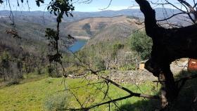 Image No.20-Maison de campagne de 2 chambres à vendre à Pampilhosa da Serra