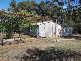 Image No.4-Ferme de 4 chambres à vendre à Pedrógão Grande