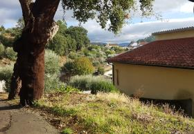 Image No.19-Maison de 3 chambres à vendre à Pampilhosa da Serra