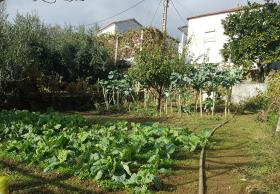 Image No.21-Maison de 3 chambres à vendre à Pampilhosa da Serra