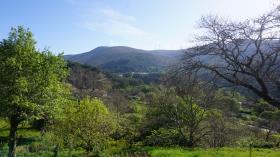 Image No.16-Grange à vendre à Castanheira de Pêra