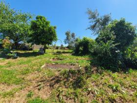 Image No.16-Terre de 1 chambre à vendre à Pedrógão Grande