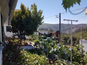Image No.16-Chalet de 4 chambres à vendre à Pampilhosa da Serra