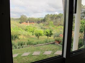 Image No.31-Bungalow de 4 chambres à vendre à Ansião
