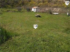Image No.15-Ferme de 11 chambres à vendre à Montefrío
